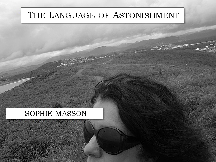 Cover image for The Language of Astonishment